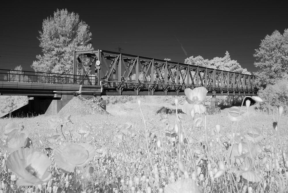 Most přes řeku Odru